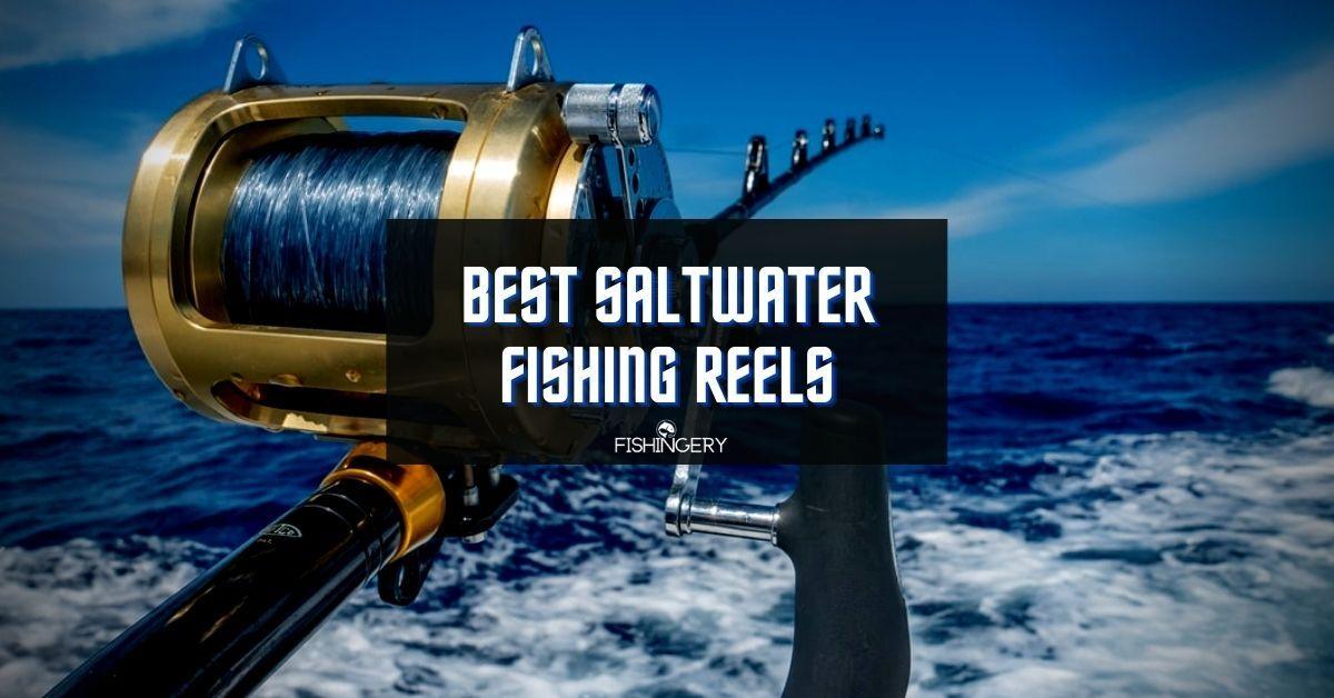 Best Saltwater Fishing Reels
