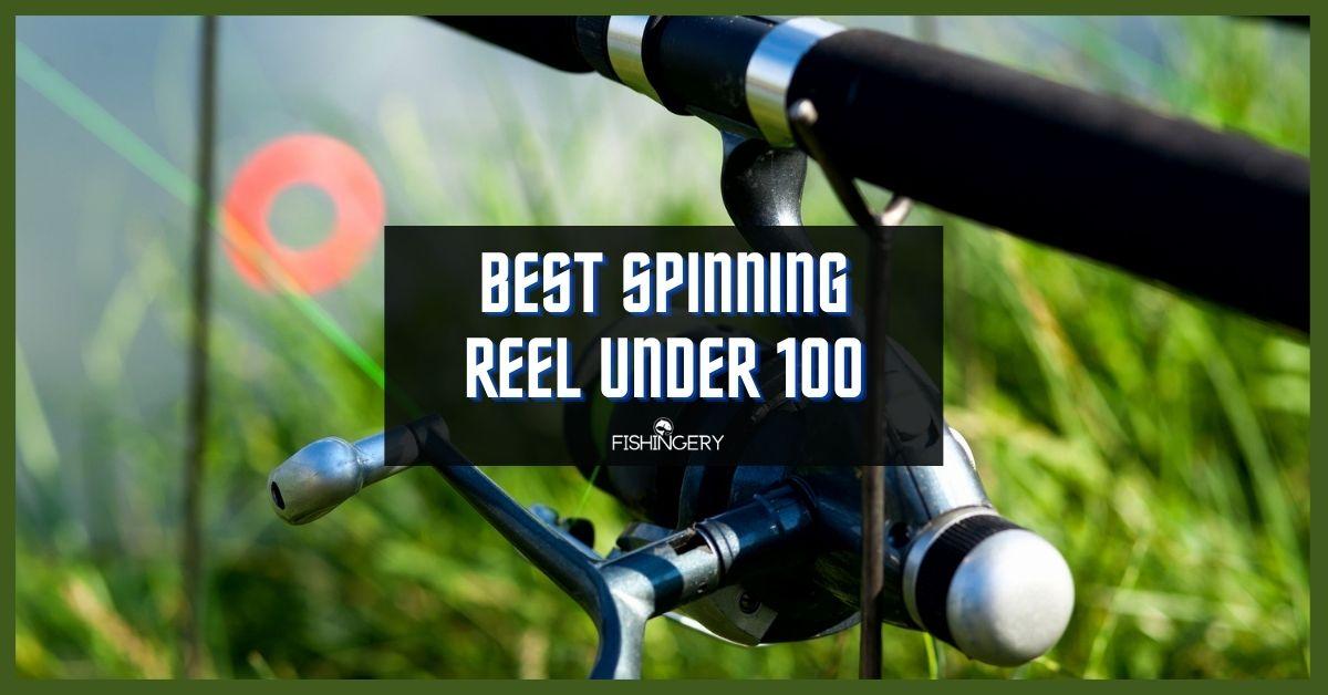 Best Spinning Reel Under 100