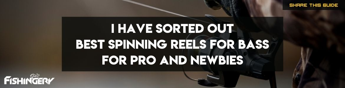 Cover Image Of Best Spinning Reels for Bass
