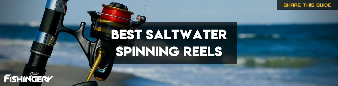 Cover Image of best saltwater spinning reels