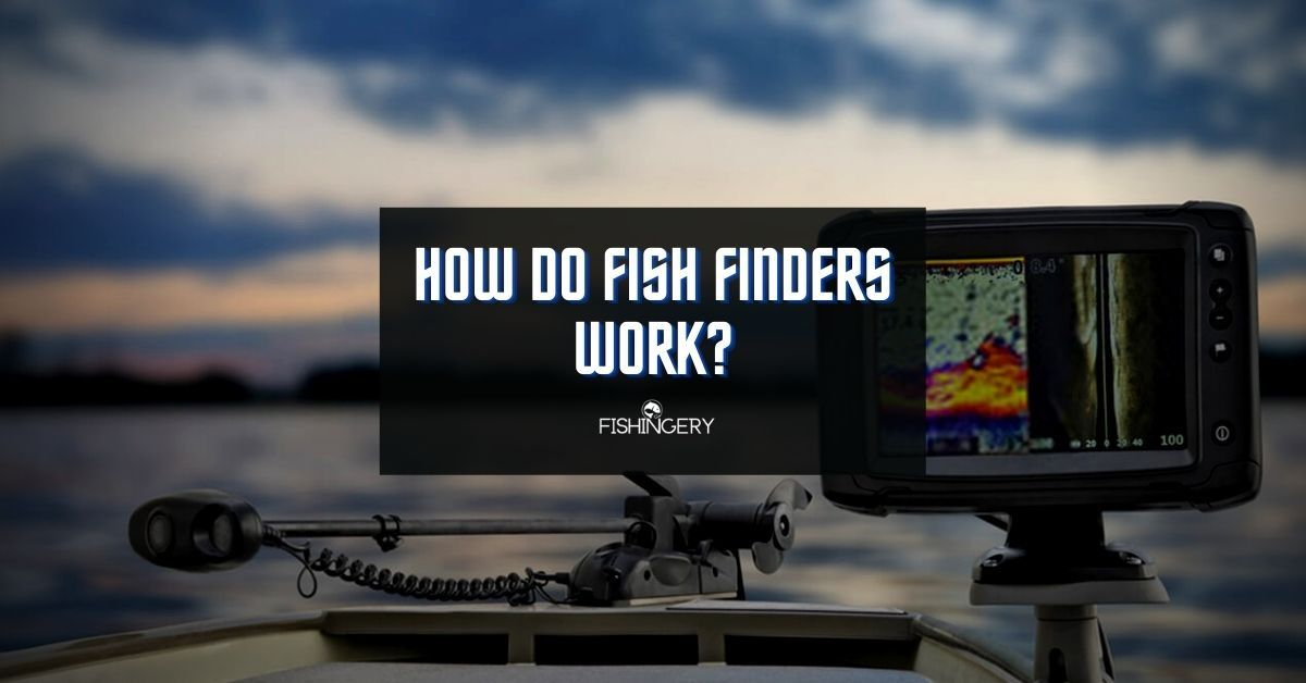 how do fish finders work