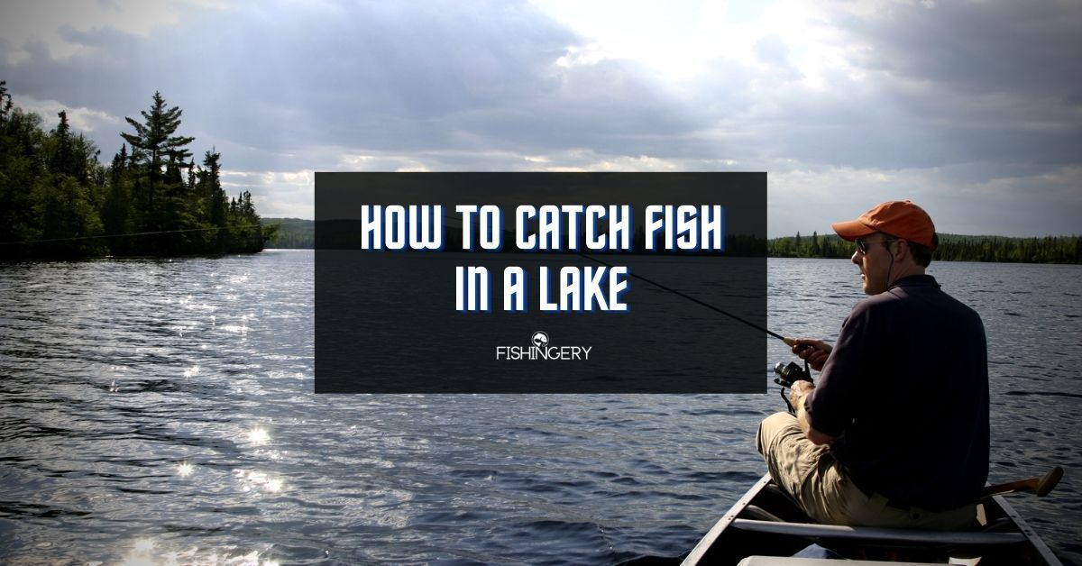 how to catch fish in a lake