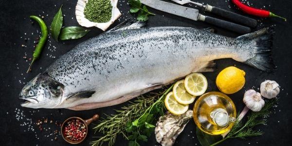 Image of silver salmon fish
