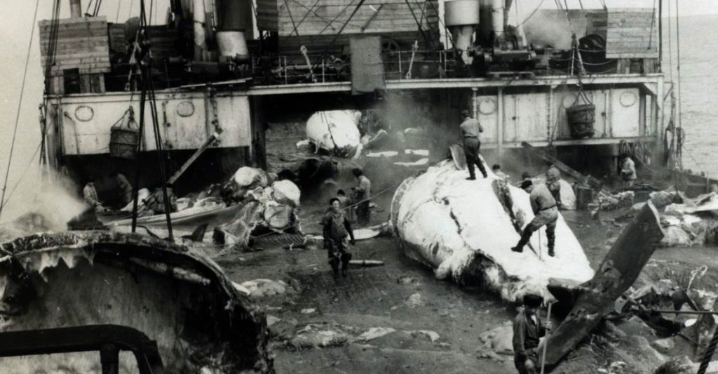 an old black and white image of whaling boat
