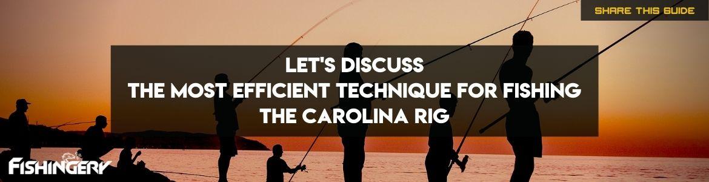 carolina rig fishing