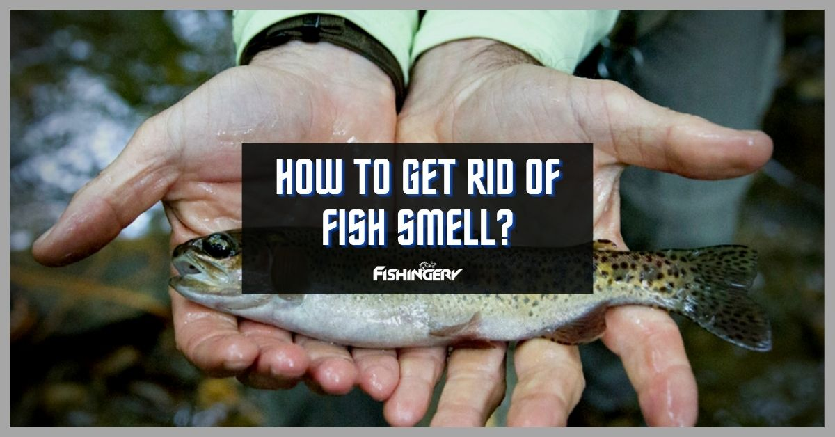 how to get rid of fish smell