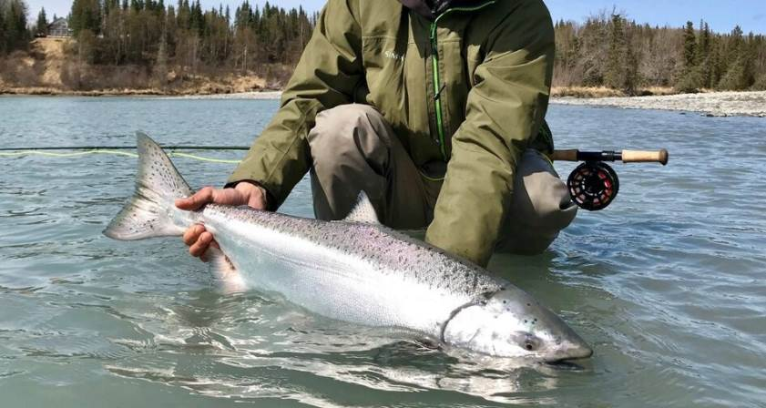 image of a person holding a salmon