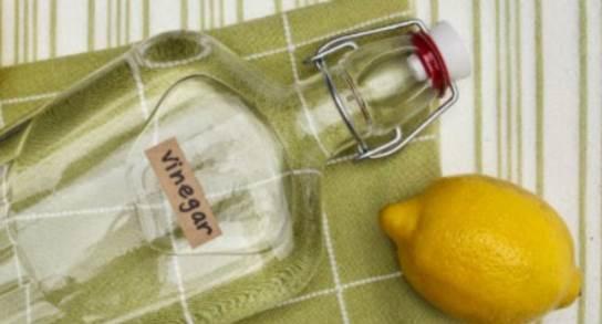 image of lemon and vinegar bottle