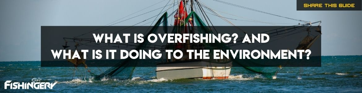 what is overfishing doing to the environment