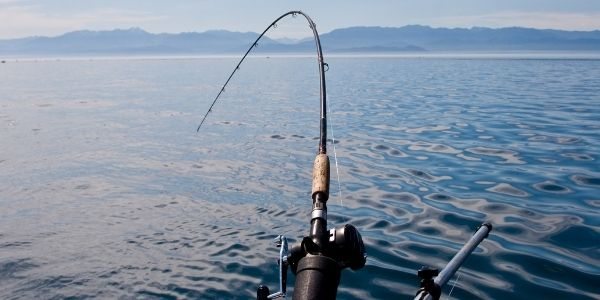 FPS View of a fishing rod