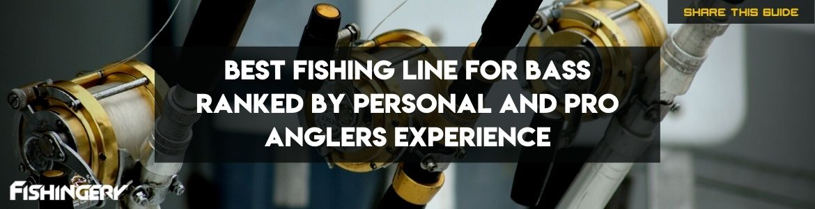 best line for bass fishing