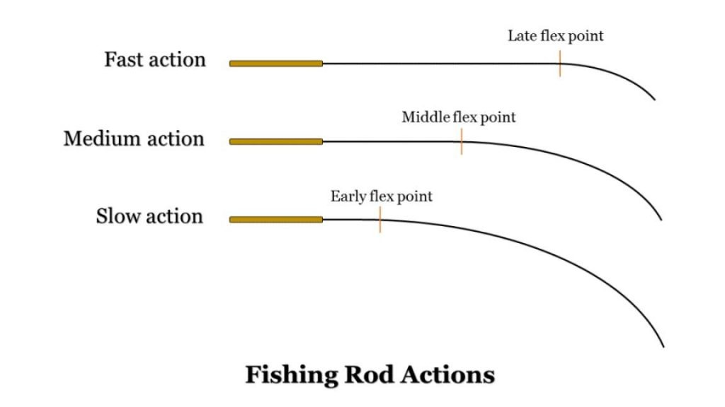example of the fishing rod action